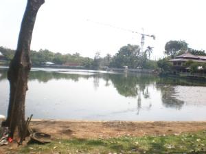 Danau UI